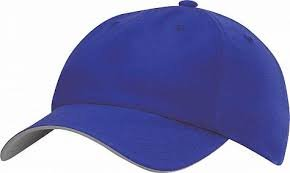 Adidas Performance Cap Blauw