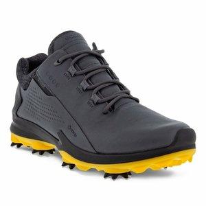 Ecco M Golf Biom G-3 Gore-Tex Shoe Magnet